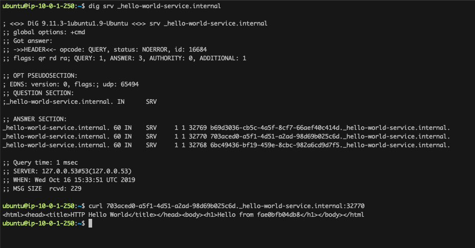 Test DNS and access with dig and curl